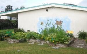 Peterson School Garden